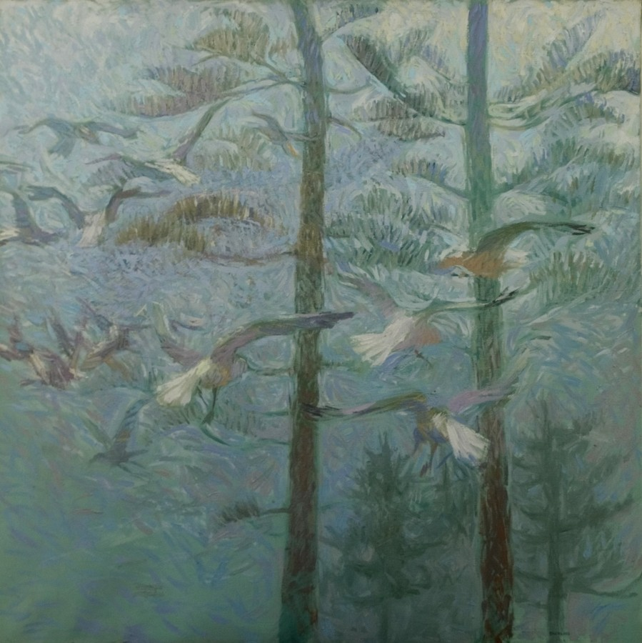 Seagulls and pines